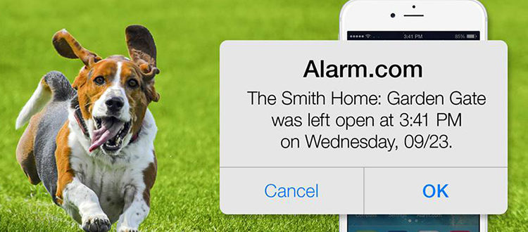 QEI Alarm Text Alerts